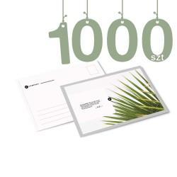 Karty pocztowe A6 1000szt