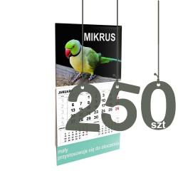 Kalendarze Mikrus 250szt